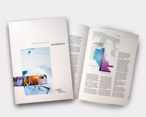 Konzept, Design Geschäftsbericht Mainkraftwerke